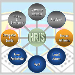 human resources information system hris essay As of aug 2018, the average pay for a human resources information systems specialist (hris) is $56,404 annually or $2067 /hr.